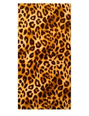 Beachfrotte Leopard